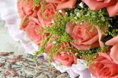 Деталь Rose Стоковая Фотография