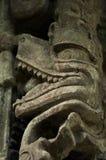 Детали руин Copan, Гондурас Стоковые Фото