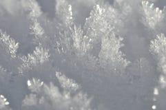Детали снежинок Стоковое фото RF