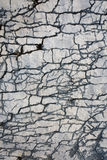 Детали Seascape Хорватии Стоковое Изображение RF