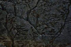 Детали Seascape Хорватии Стоковое Изображение