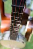 Деталь банджо Стоковые Фотографии RF
