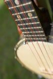 Деталь банджо Стоковое Фото