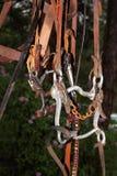 Деталь бита уздечки Стоковые Изображения RF