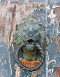 Деталь двери стороны льва Стоковая Фотография RF