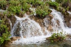 Деталь водопада с заводами от национального парка озер Plitvice, Стоковое Изображение RF