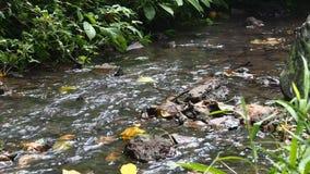 Деталь воды в потоке сток-видео
