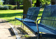 Деталь голубого стенда на парке весны Стоковое фото RF