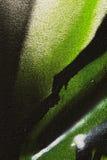 Деталь граффити как обои, текстуры, улавливателя глаза Стоковая Фотография RF