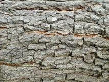 Деталь деревянного Стоковые Фотографии RF