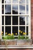 Деталь деревянных окна и коробки цветков на кирпичной стене Manches Стоковые Изображения RF