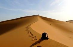 Деталь задней части и hiker взбираясь к верхней части большой песчанной дюны в красном море дюны эрга Chebbi, Марокко Стоковое Изображение