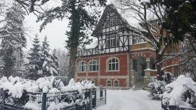Деталь зимы Стоковая Фотография RF