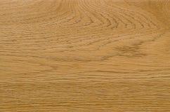 Деталь картины природы предпосылки древесины золы Стоковая Фотография RF