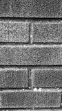 Деталь кирпичной кладки в черно-белом Стоковая Фотография