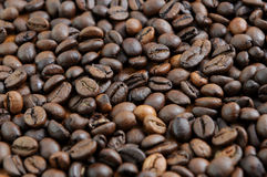 Деталь кофейных зерен Стоковое Изображение