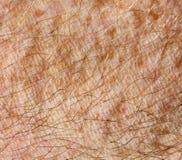 Людские кожа и волосы   Стоковые Фото