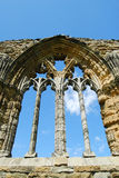 Деталь на каменной кладке на аббатстве Whitby, северном Йоркшире Стоковые Изображения