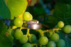 Деталь обручального кольца от свадьбы винодельни Стоковое Фото