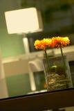 Деталь домашних цветков апельсина украшения стоковые фотографии rf