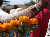 Деталь руки подвижника на фестивале Kavady стоковые изображения rf
