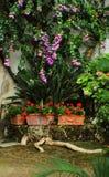 Деталь сада от Hameau de Ла Reine Стоковое Изображение RF