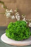Деталь свежих листьев петрушки на предпосылке Стоковые Фото