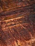 Деталь старых деревянных доск Стоковые Фото