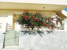 Деталь achitecture двери в гостинице строя Грецию Стоковое фото RF