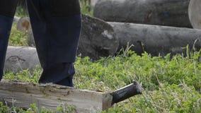 Деталь jack пиломатериала прерывая швырок с осью на зимнее время Конец вверх woodcutter разделяет древесину, сельскую сцену акции видеоматериалы