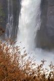 Деталь Victoria Falls Стоковое фото RF