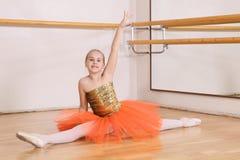 детеныши балерины стоковое фото