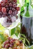 детеныши вина виноградины бутылки Стоковое Фото