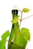 детеныши вина лозы виноградины ветви бутылки Стоковое Фото