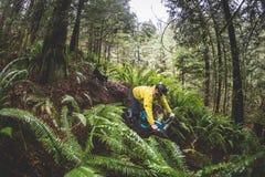 детеныши горы человека bike Стоковое Изображение RF