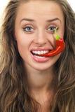 детеныши горячего перца чилей красные Стоковые Фотографии RF