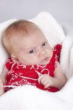 детеныши девушки младенца милые стоковые фото