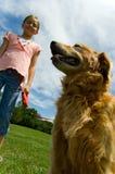 детеныши девушки собаки Стоковое Изображение RF