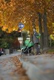 детеныши женщины детской дорожной коляски Стоковая Фотография RF
