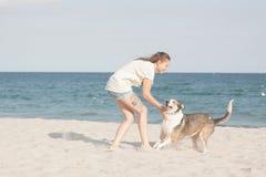 детеныши женщины griffon собаки breed bruxellois Стоковые Фотографии RF