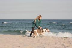 детеныши женщины griffon собаки breed bruxellois Стоковые Фото