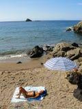 Детеныши загорели женщину в костюме заплывания загорая на песчаном пляже Стоковая Фотография RF