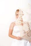 детеныши зонтика невесты довольно романтичные Стоковые Фото