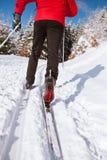 детеныши катания на лыжах человека страны перекрестные Стоковые Изображения