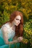 детеныши красивейших волос девушки красные Стоковая Фотография RF