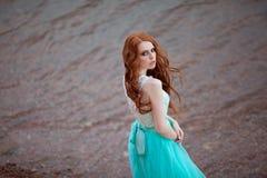 детеныши красивейших волос девушки красные Стоковое фото RF