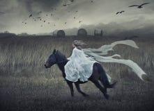 детеныши красотки романтичные стоковые фотографии rf