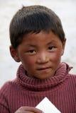 детеныши мальчика тибетские Стоковое фото RF