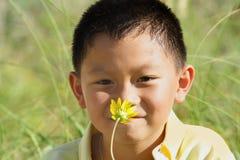детеныши обнюхивать цветка мальчика Стоковые Изображения