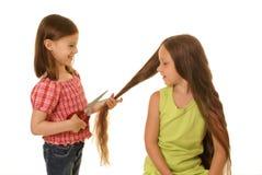 детеныши парикмахера стоковое фото